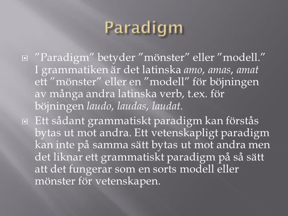  Paradigm betyder mönster eller modell. I grammatiken är det latinska amo, amas, amat ett mönster eller en modell för böjningen av många andra latinska verb, t.ex.
