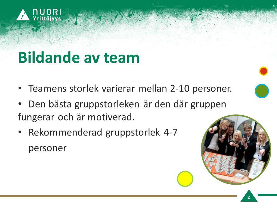 Bildande av team • Teamens storlek varierar mellan 2-10 personer.