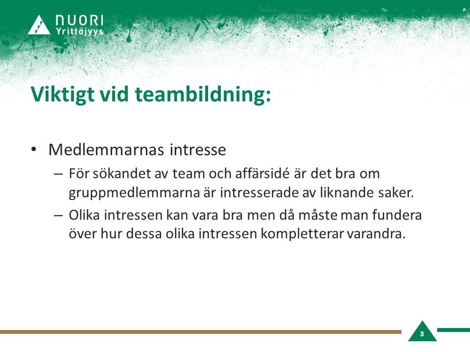 Viktigt vid teambildning: • Medlemmarnas intresse – För sökandet av team och affärsidé är det bra om gruppmedlemmarna är intresserade av liknande saker.