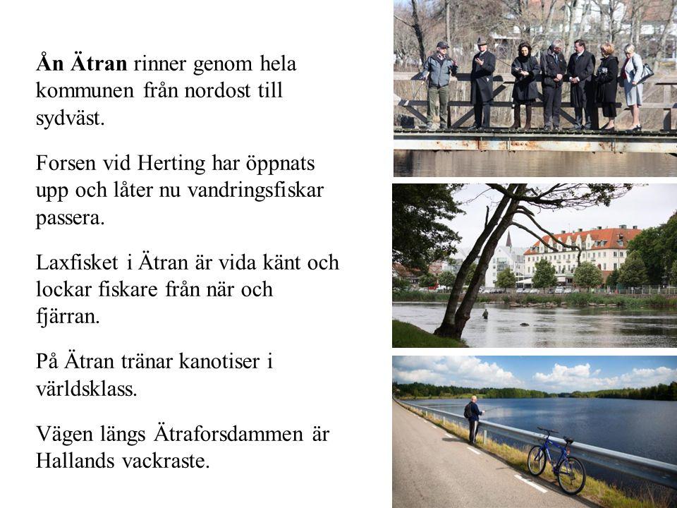 Ån Ätran rinner genom hela kommunen från nordost till sydväst. Forsen vid Herting har öppnats upp och låter nu vandringsfiskar passera. Laxfisket i Ät