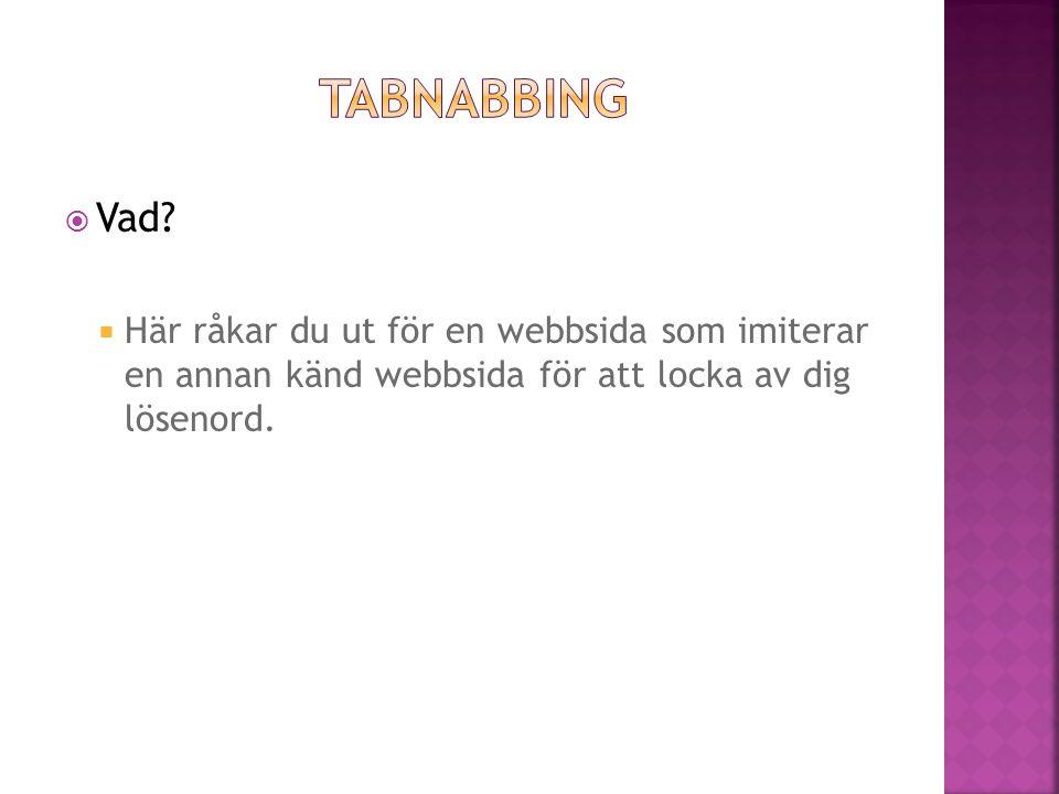  Här råkar du ut för en webbsida som imiterar en annan känd webbsida för att locka av dig lösenord.