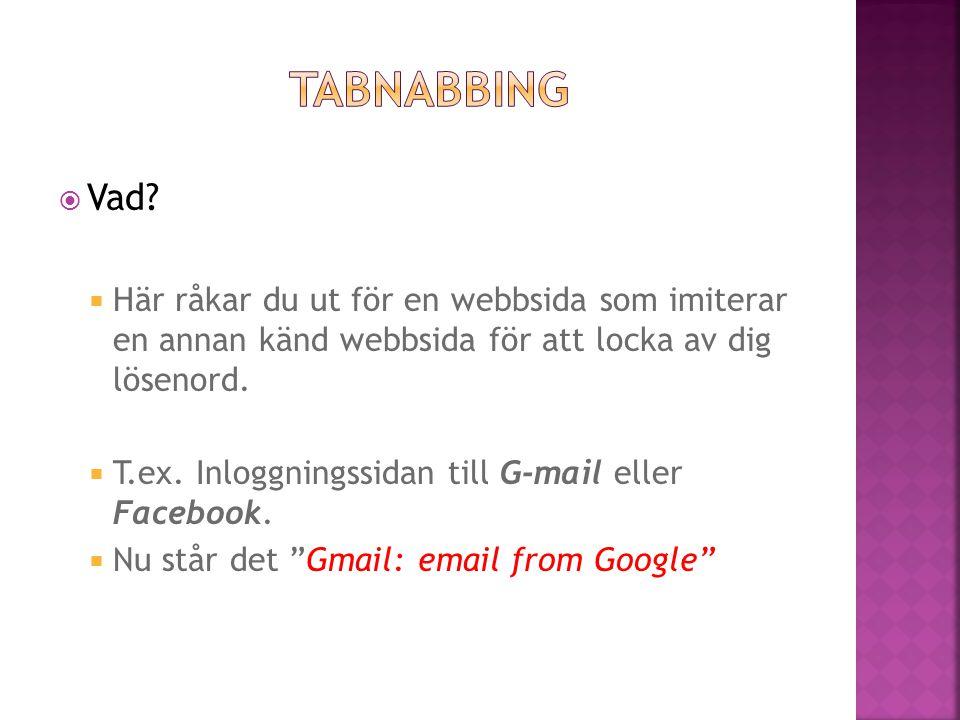  Vad?  Här råkar du ut för en webbsida som imiterar en annan känd webbsida för att locka av dig lösenord.  T.ex. Inloggningssidan till G-mail eller