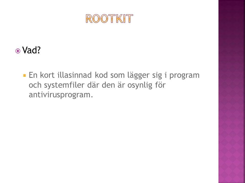  En kort illasinnad kod som lägger sig i program och systemfiler där den är osynlig för antivirusprogram.