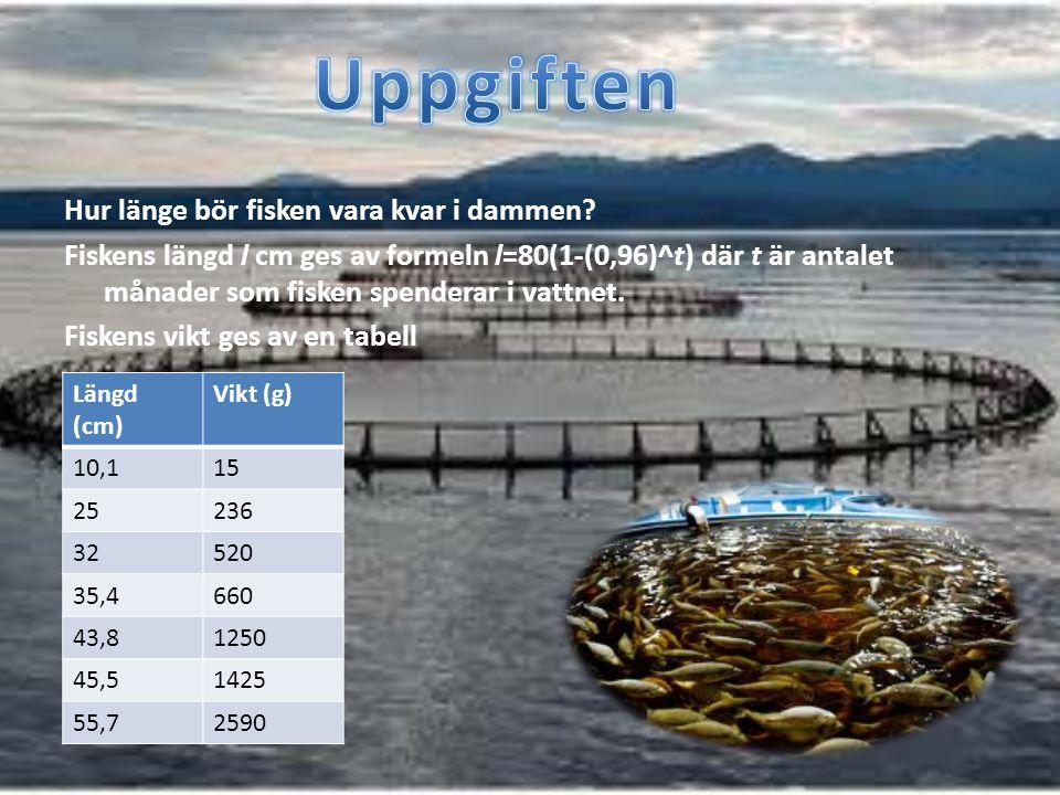 Hur länge bör fisken vara kvar i dammen? Fiskens längd l cm ges av formeln l=80(1-(0,96)^t) där t är antalet månader som fisken spenderar i vattnet. F