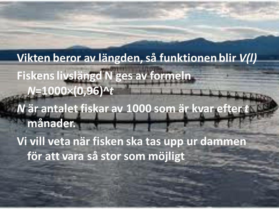Vikten beror av längden, så funktionen blir V(l) Fiskens livslängd N ges av formeln N=1000×(0,96)^t N är antalet fiskar av 1000 som är kvar efter t må