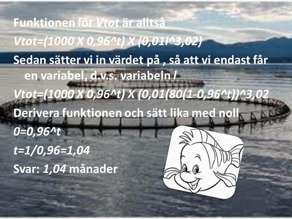 Funktionen för Vtot är alltså Vtot=(1000 X 0,96^t) X (0,01l^3,02) Sedan sätter vi in värdet på, så att vi endast får en variabel, d.v.s. variabeln l V