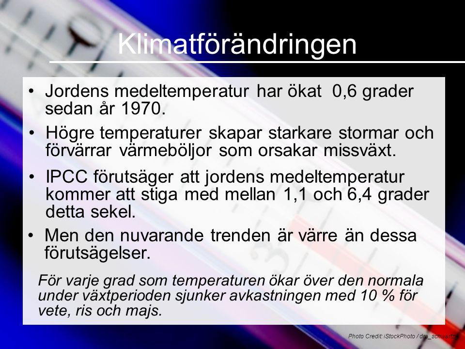 Klimatförändringen •Jordens medeltemperatur har ökat 0,6 grader sedan år 1970. Photo Credit: iStockPhoto / dra_schwartz •Högre temperaturer skapar sta