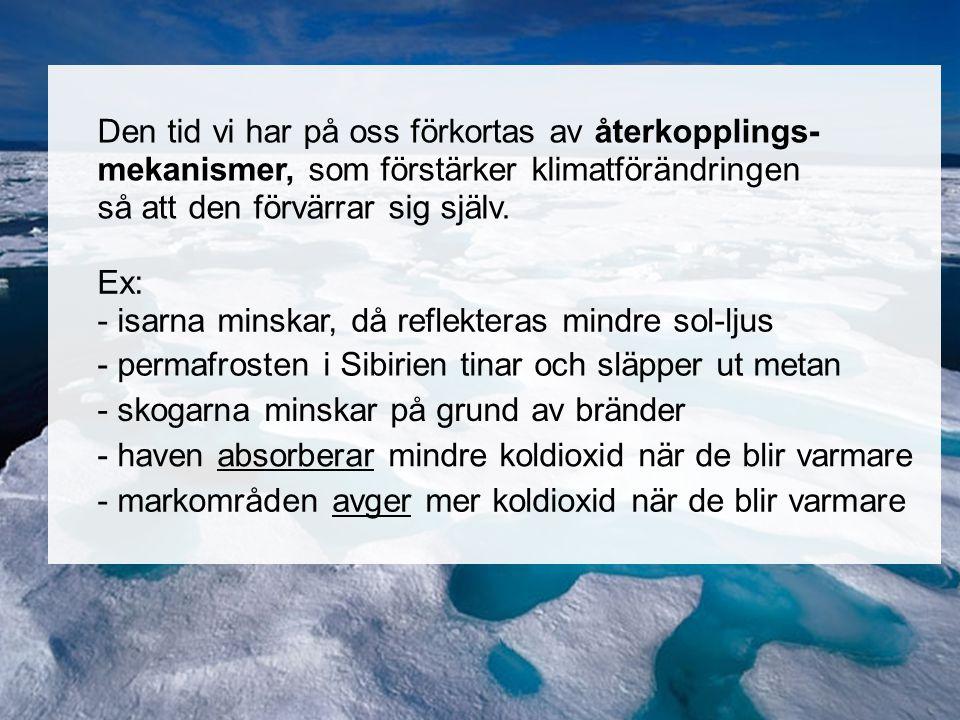 Norra ishavet Den tid vi har på oss förkortas av återkopplings- mekanismer, som förstärker klimatförändringen så att den förvärrar sig själv. Ex: - is