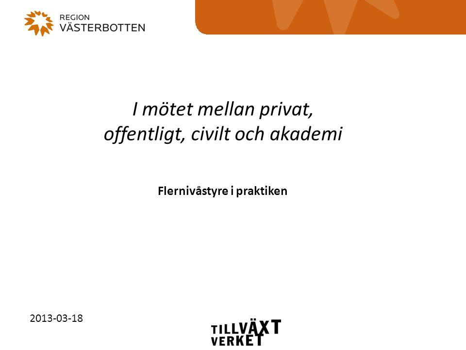 I mötet mellan privat, offentligt, civilt och akademi Flernivåstyre i praktiken 2013-03-18