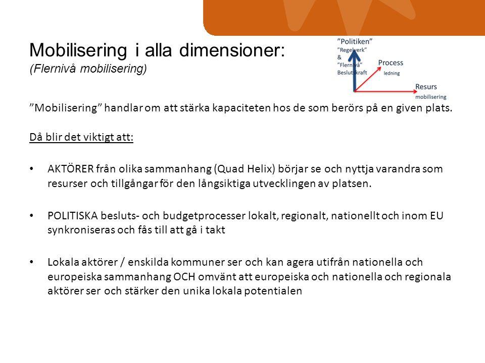 """Mobilisering i alla dimensioner: (Flernivå mobilisering) """"Mobilisering"""" handlar om att stärka kapaciteten hos de som berörs på en given plats. Då blir"""