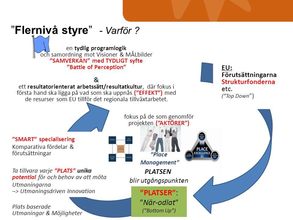 """en tydlig programlogik och samordning mot Visioner & MÅLbilder """"SAMVERKAN"""" med TYDLIGT syfte """"Battle of Perception"""" & ett resultatorienterat arbetssät"""