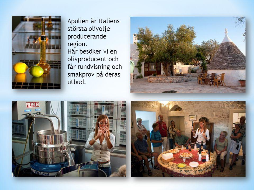 Apulien är Italiens största olivolje- producerande region. Här besöker vi en olivproducent och får rundvisning och smakprov på deras utbud.