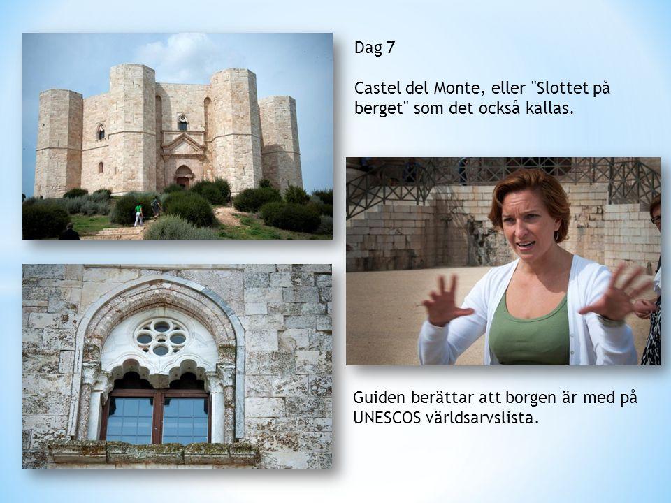 Dag 7 Castel del Monte, eller