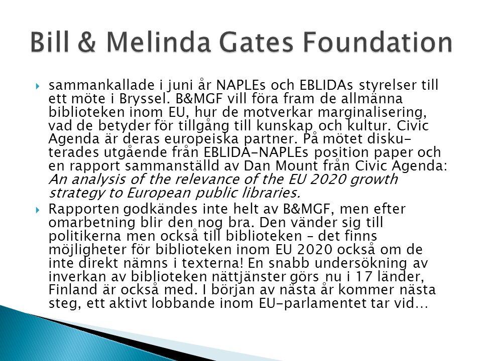  sammankallade i juni år NAPLEs och EBLIDAs styrelser till ett möte i Bryssel. B&MGF vill föra fram de allmänna biblioteken inom EU, hur de motverkar