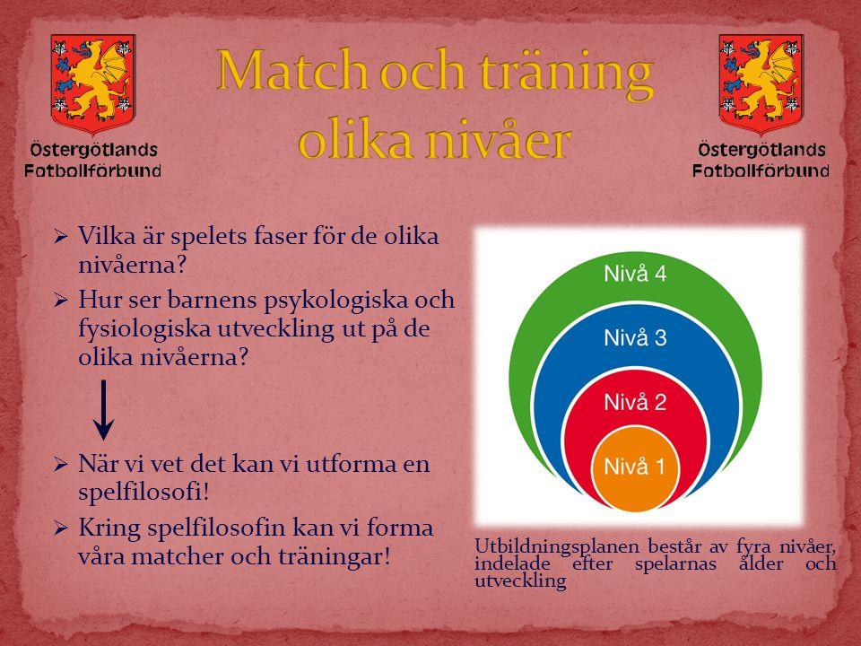  Vilka är spelets faser för de olika nivåerna?  Hur ser barnens psykologiska och fysiologiska utveckling ut på de olika nivåerna?  När vi vet det k