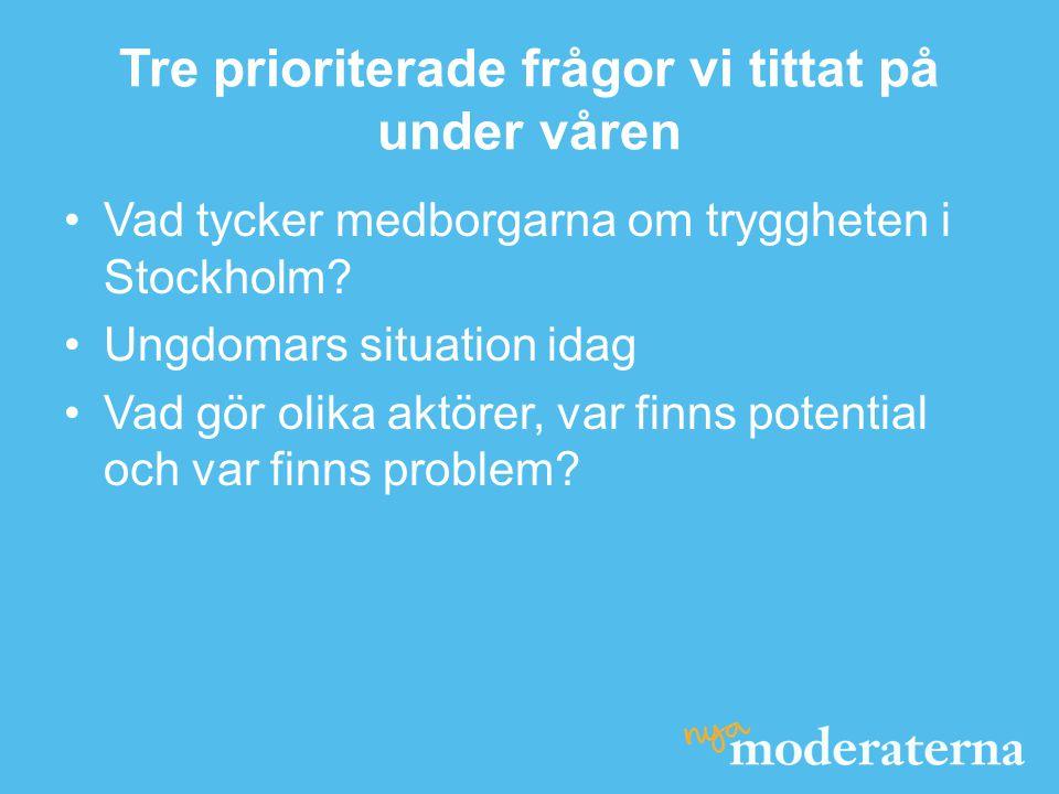 Tre prioriterade frågor vi tittat på under våren •Vad tycker medborgarna om tryggheten i Stockholm? •Ungdomars situation idag •Vad gör olika aktörer,
