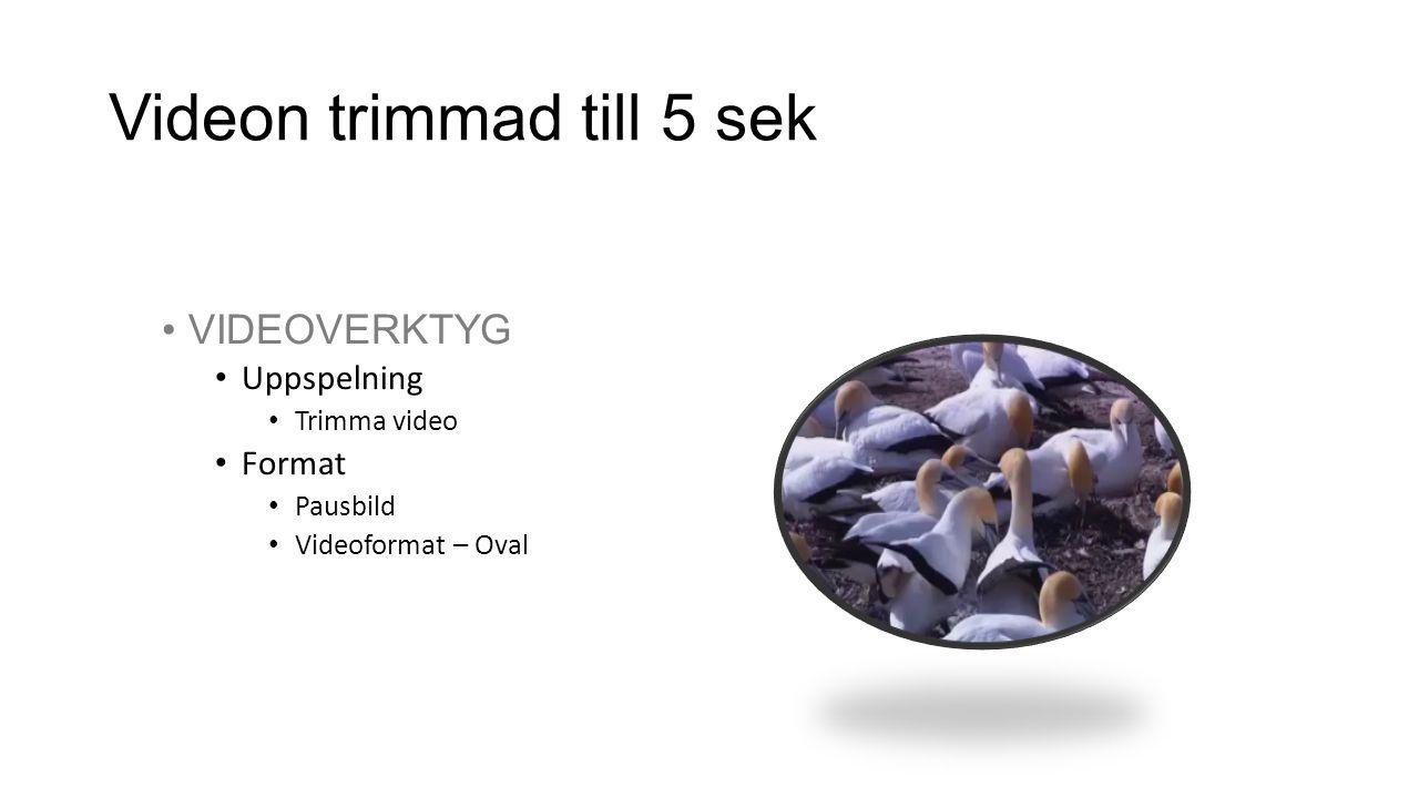 Videon trimmad till 5 sek •VIDEOVERKTYG • Uppspelning • Trimma video • Format • Pausbild • Videoformat – Oval