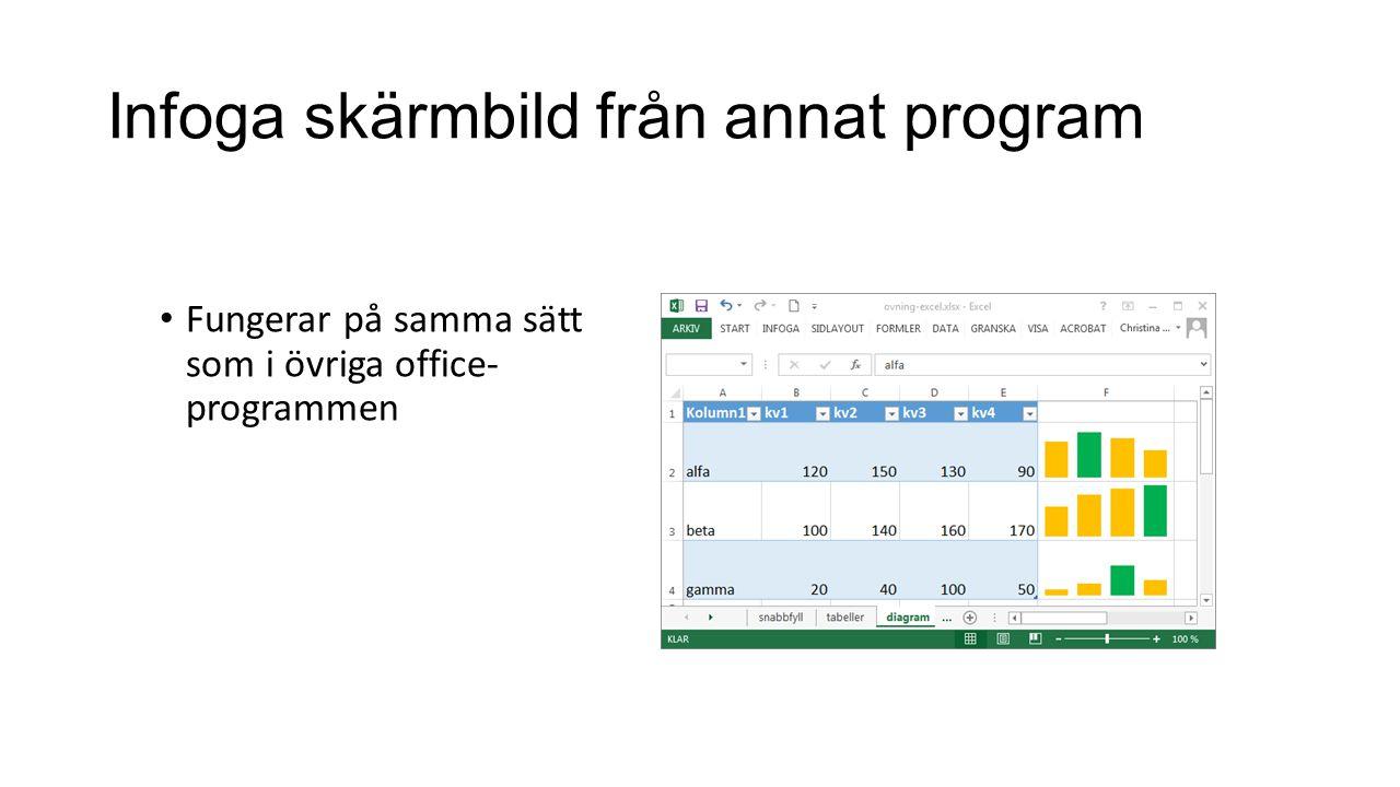 Infoga skärmbild från annat program • Fungerar på samma sätt som i övriga office- programmen