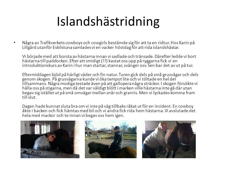 Islandshästridning • Några av Trafikverkets cowboys och cowgirls bestämde sig för att ta en ridtur. Hos Karin på Lillgård utanför Eskilstuna samlades