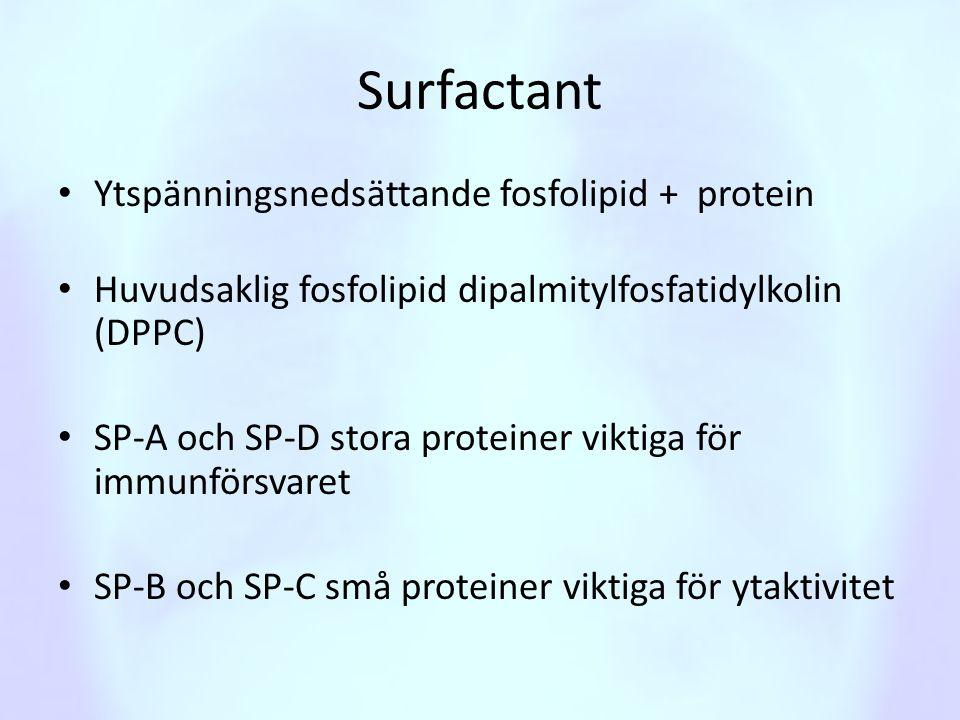 Surfactant • Ytspänningsnedsättande fosfolipid + protein • Huvudsaklig fosfolipid dipalmitylfosfatidylkolin (DPPC) • SP-A och SP-D stora proteiner vik