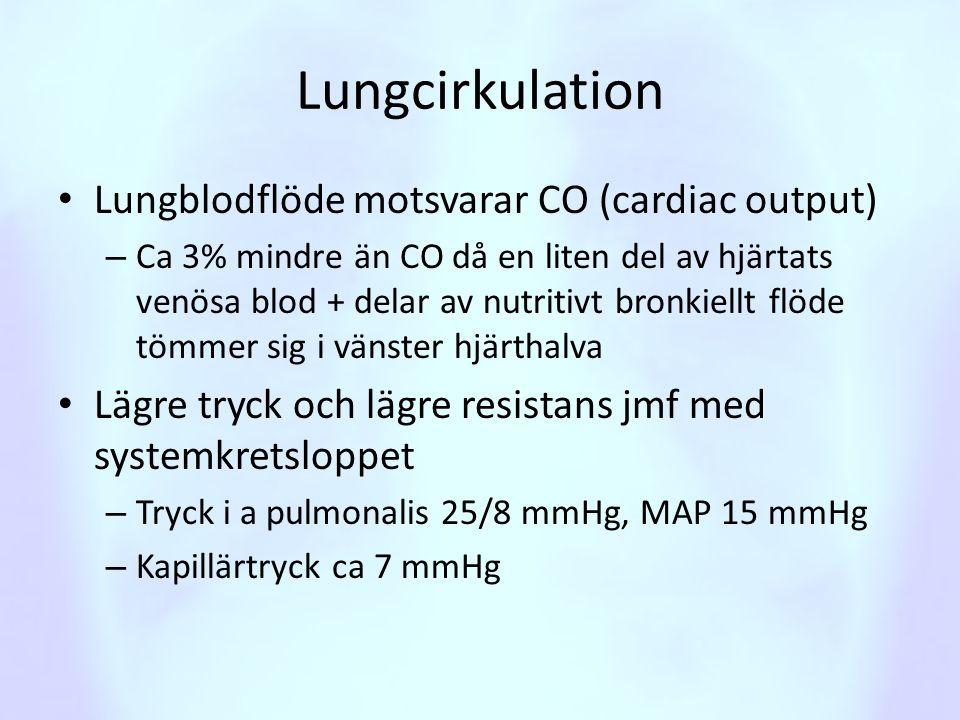 Lungcirkulation • Lungblodflöde motsvarar CO (cardiac output) – Ca 3% mindre än CO då en liten del av hjärtats venösa blod + delar av nutritivt bronki