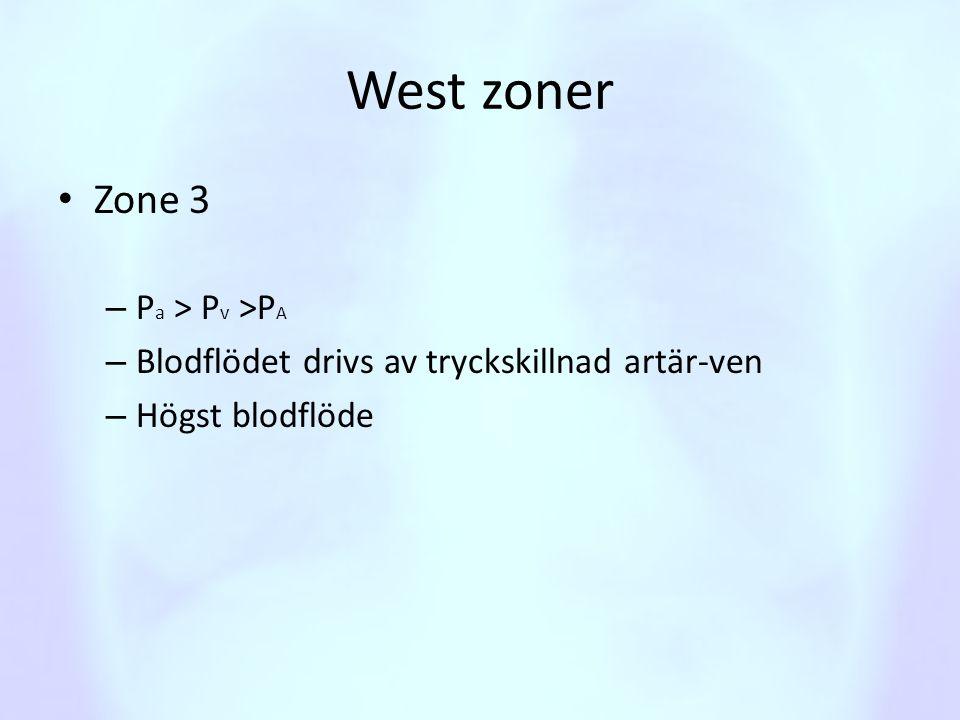 West zoner • Zone 3 – P a > P v >P A – Blodflödet drivs av tryckskillnad artär-ven – Högst blodflöde