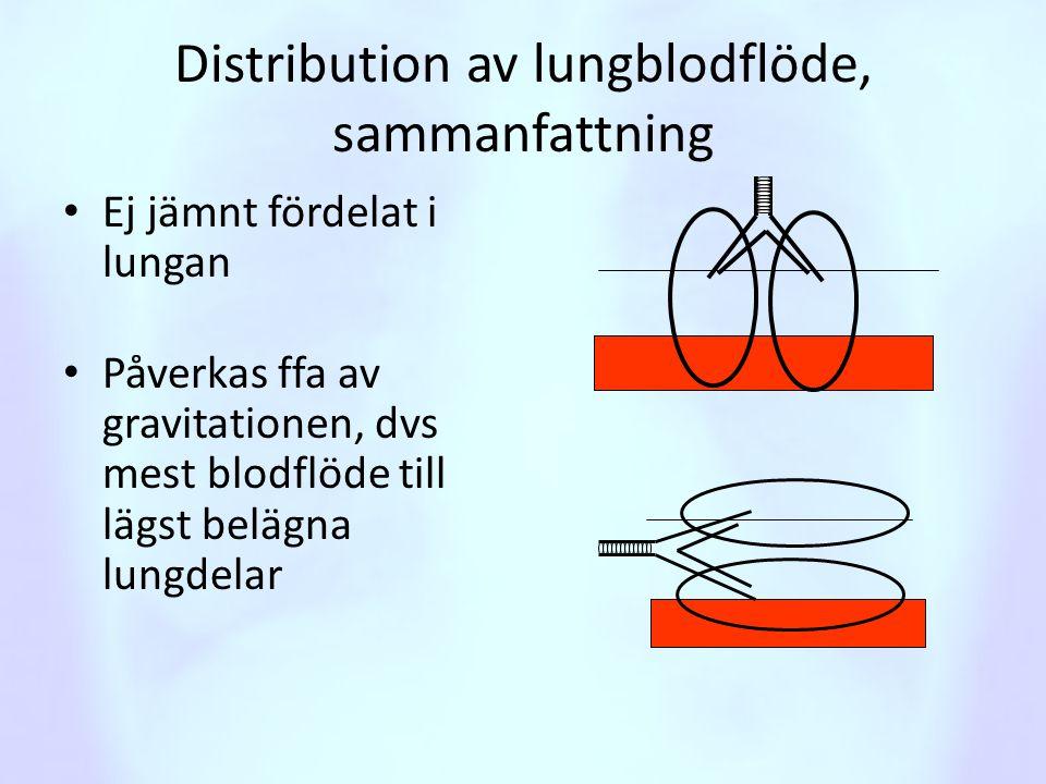 Distribution av lungblodflöde, sammanfattning • Ej jämnt fördelat i lungan • Påverkas ffa av gravitationen, dvs mest blodflöde till lägst belägna lung