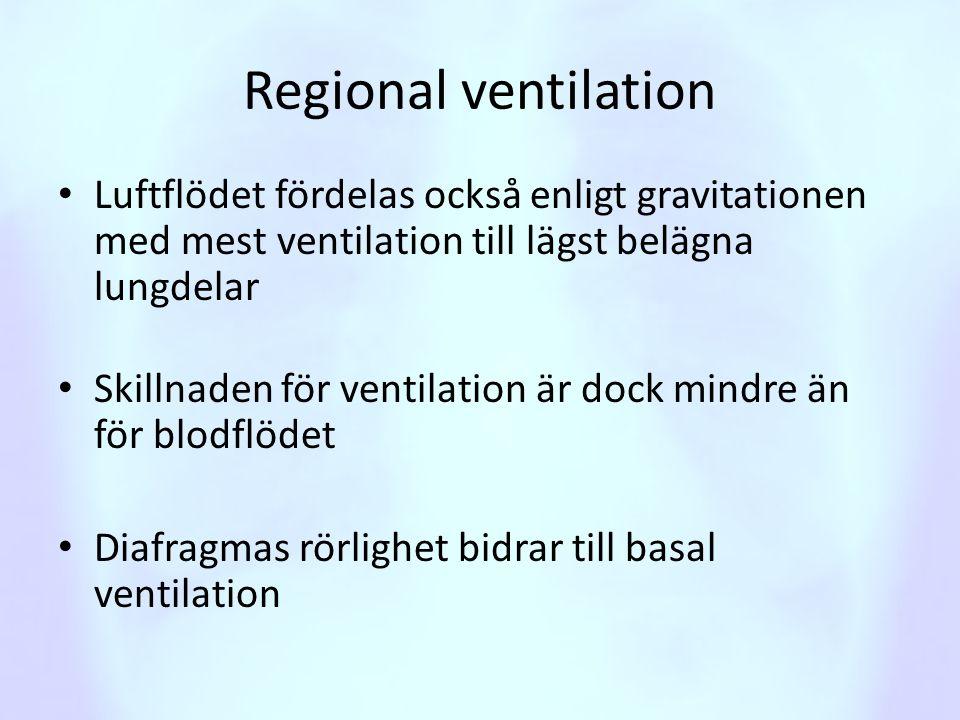 Regional ventilation • Luftflödet fördelas också enligt gravitationen med mest ventilation till lägst belägna lungdelar • Skillnaden för ventilation ä