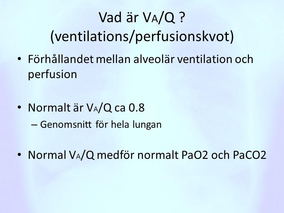 Vad är V A /Q ? (ventilations/perfusionskvot) • Förhållandet mellan alveolär ventilation och perfusion • Normalt är V A /Q ca 0.8 – Genomsnitt för hel