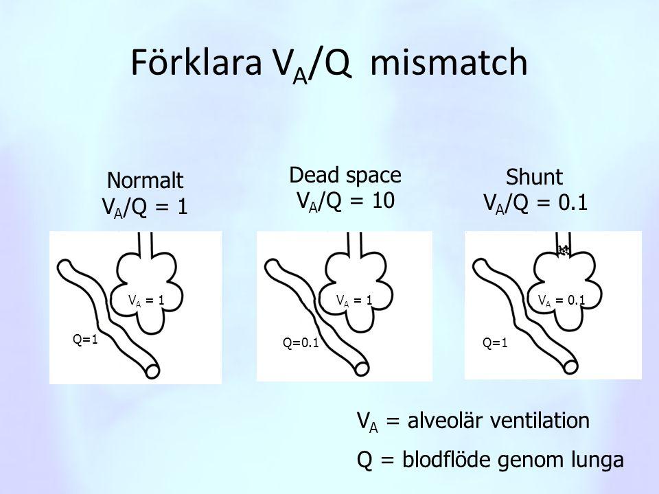 Förklara V A /Q mismatch Normalt V A /Q = 1 Dead space V A /Q = 10 Shunt V A /Q = 0.1 V A = alveolär ventilation Q = blodflöde genom lunga V A = 1 V A