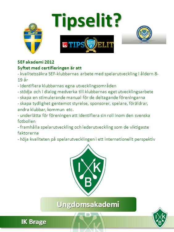 IK Brage Ungdomsakademi IK Brage har valt att satsa på en SEF-certifierad ungdomsakademi där spelarna erbjuds en strukturerad och professionell utbildning till elitfotbollsspelare.