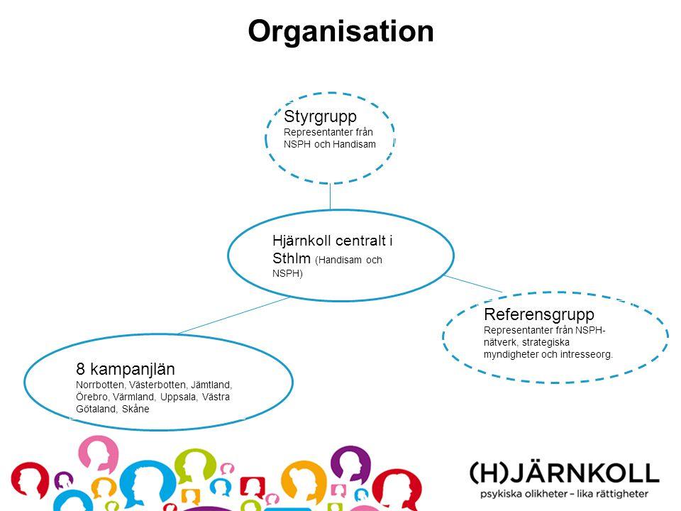 Organisation Styrgrupp Representanter från NSPH och Handisam Hjärnkoll centralt i Sthlm (Handisam och NSPH) 8 kampanjlän Norrbotten, Västerbotten, Jäm