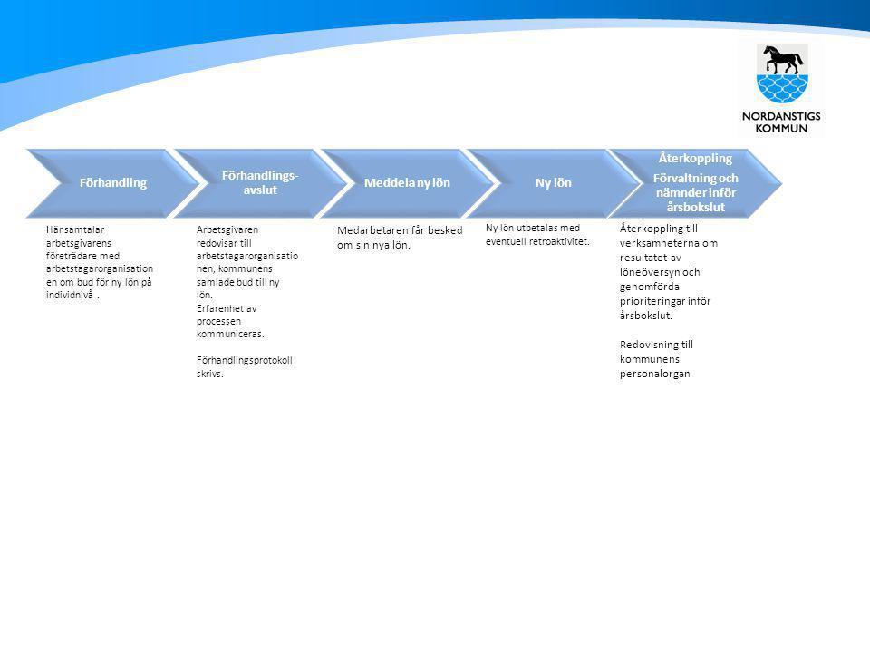 Löneöversynsprocessen – genomförande Samtal chef-medarbetare Arbetsgivaren Analyserar och bedömer konsekvenser Arbetsgivarens lönepolitik Resultat och utvecklingssamtal Överläggning Upptakt Lönesättande samtal AvstämningNy lönÅterkoppling