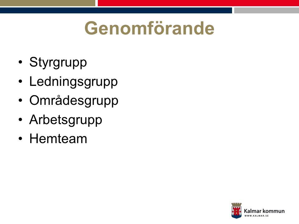 Genomförande •Styrgrupp •Ledningsgrupp •Områdesgrupp •Arbetsgrupp •Hemteam