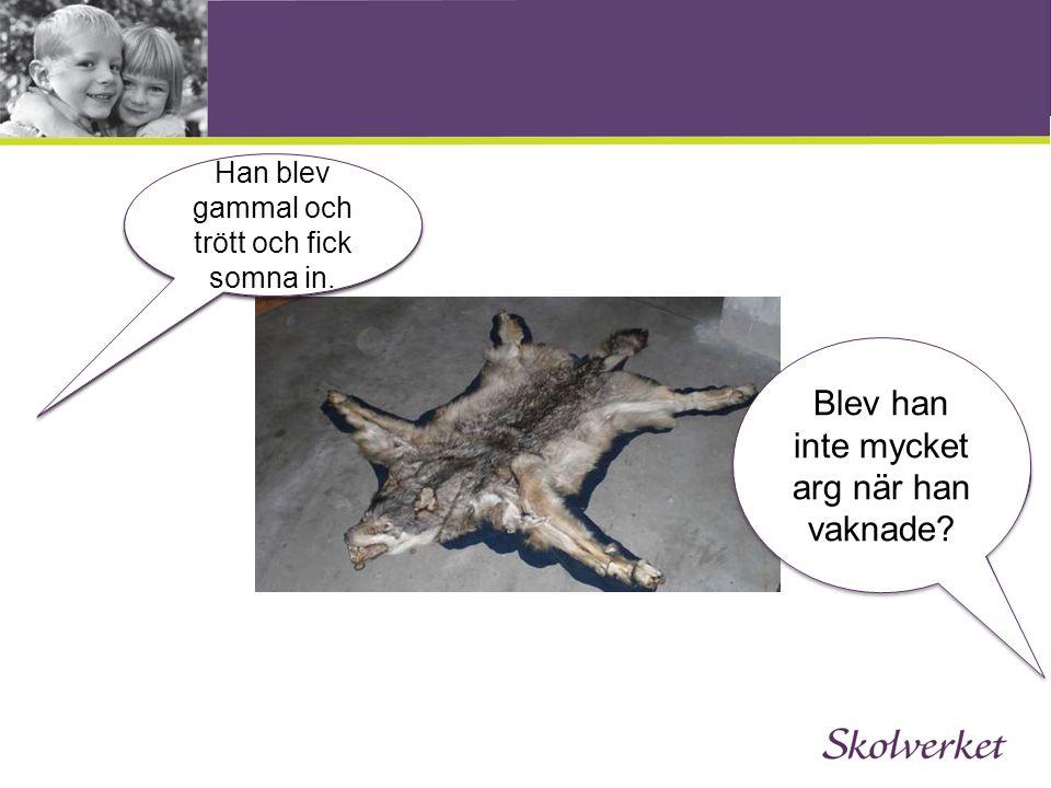 Texternas struktur 1.Inledning 2. Språkutvecklande arbetssätt 3.