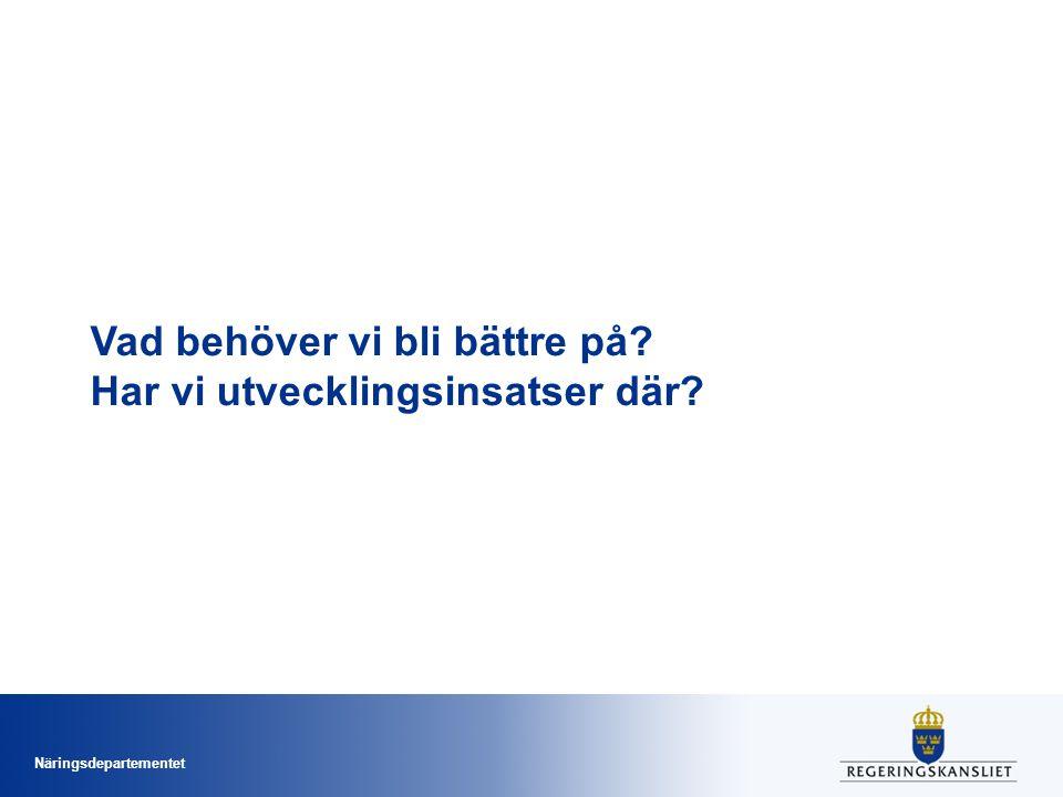 Nationella utvecklingsportföljen omfattar Svenska utvecklingsinsatser som utvecklar förvaltningsgemensamma lösningar i samverkan Internationella initiativ som påverkar svensk e-förvaltningsutveckling Verksamhetsutveckling med fokus på e-förvaltningsutveckling inom hela offentlig sektor Pågående och (allteftersom) avslutade utvecklingsinsatser