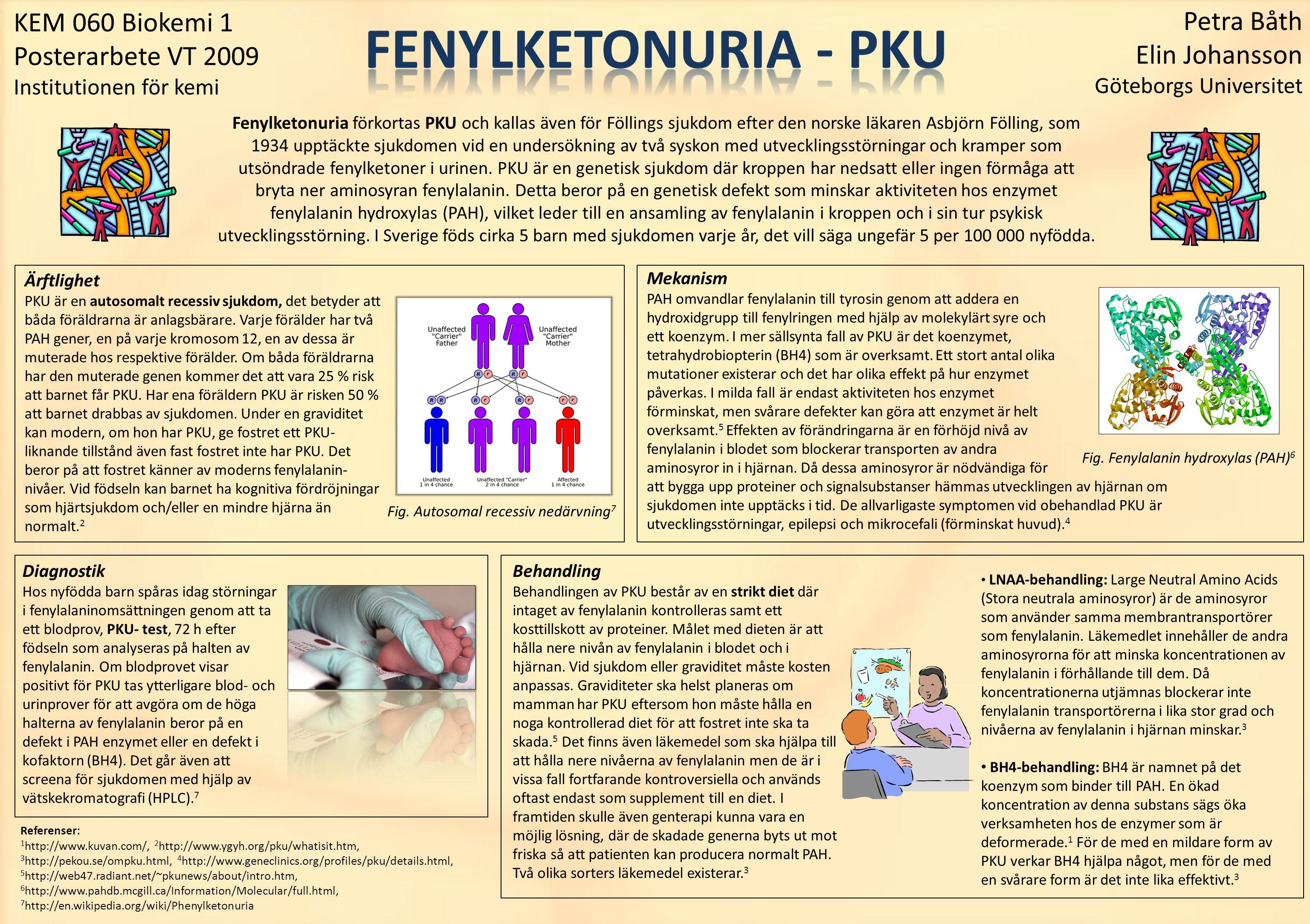 KEM 060 Biokemi 1 Posterarbete VT 2009 Institutionen för kemi Fenylketonuria förkortas PKU och kallas även för Föllings sjukdom efter den norske läkar
