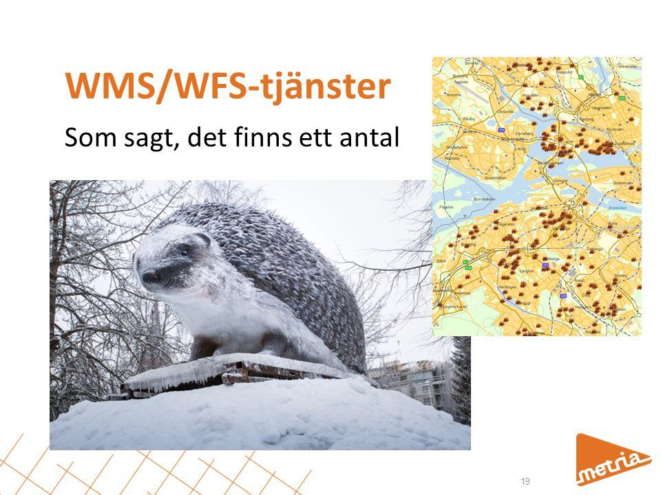 WMS/WFS-tjänster Som sagt, det finns ett antal 19