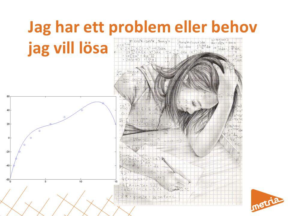 Jag behöver…  Kunskap/kompetens/förståelse  Data  Teknisk lösning  Medel (tid, budget, resurser) 9