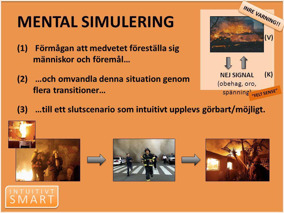 INTUITIVT SMART INTUITIVT SMART NEJ SIGNAL (obehag, oro, spänning) MENTAL SIMULERING (1) Förmågan att medvetet föreställa sig människor och föremål… (