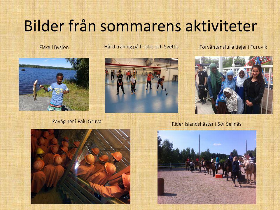 Bilder från sommarens aktiviteter Fiske i Bysjön Påväg ner i Falu Gruva Hård träning på Friskis och Svettis Rider Islandshästar i Sör Sellnäs Förvänta