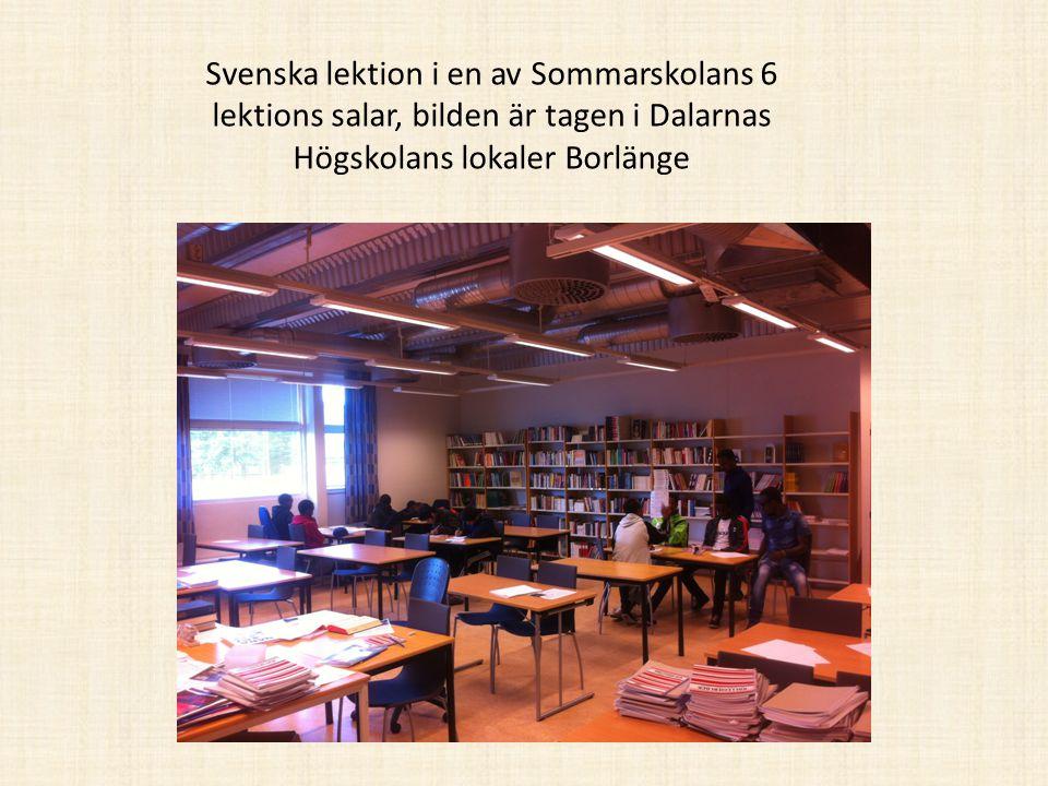 Svenska lektion i en av Sommarskolans 6 lektions salar, bilden är tagen i Dalarnas Högskolans lokaler Borlänge