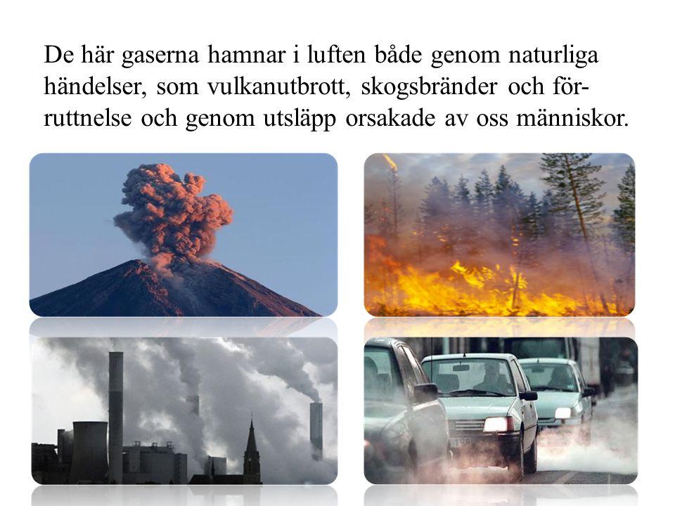 De här gaserna hamnar i luften både genom naturliga händelser, som vulkanutbrott, skogsbränder och för- ruttnelse och genom utsläpp orsakade av oss mä