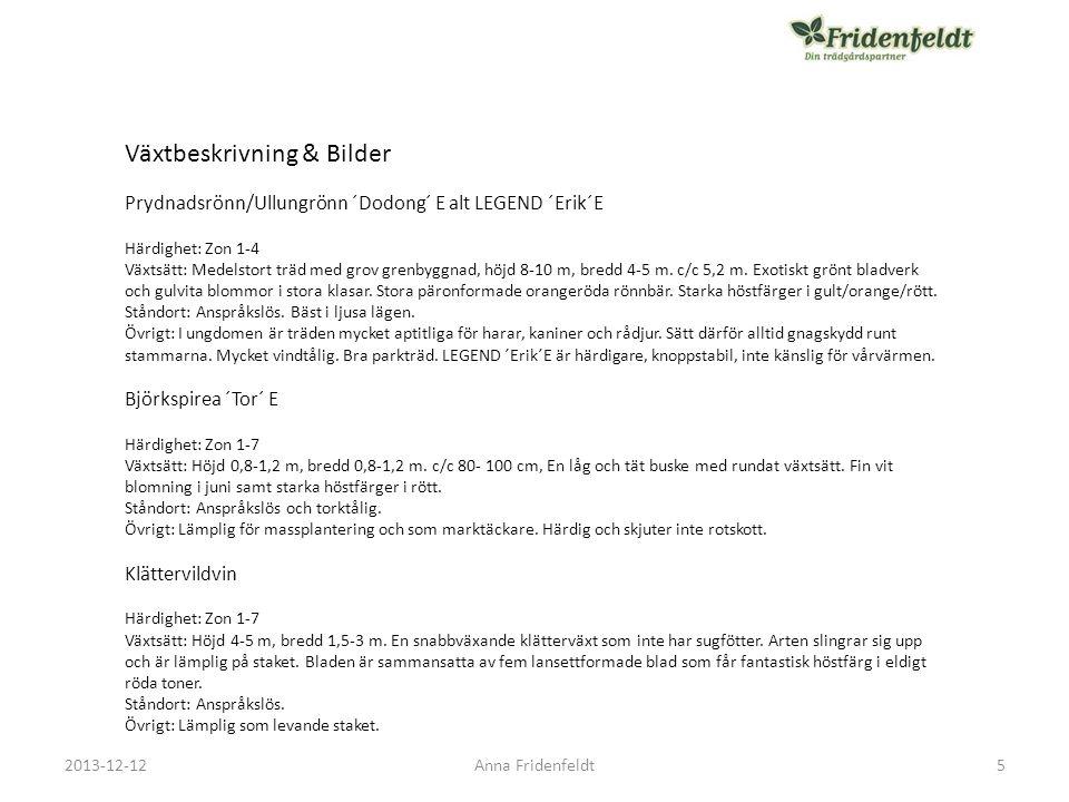 2013-12-12Anna Fridenfeldt Bukettapel fk Eskilstuna E 16