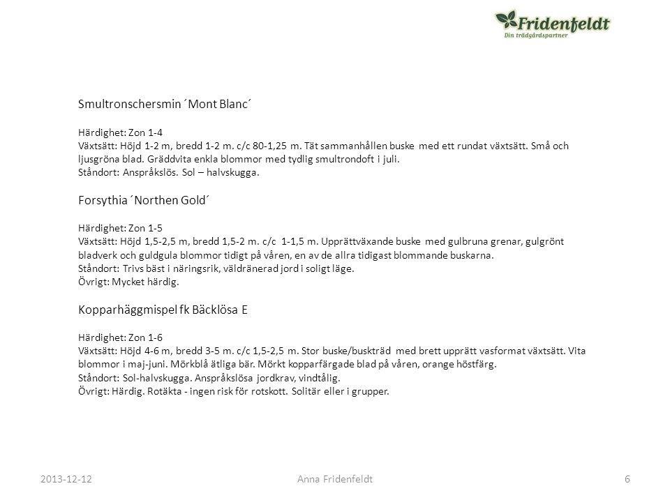 Bärhäggmispel fk Alvdal E Härdighet: Zon 1-6 Växtsätt: Höjd 2,5-3 m, bredd 1,5 m.