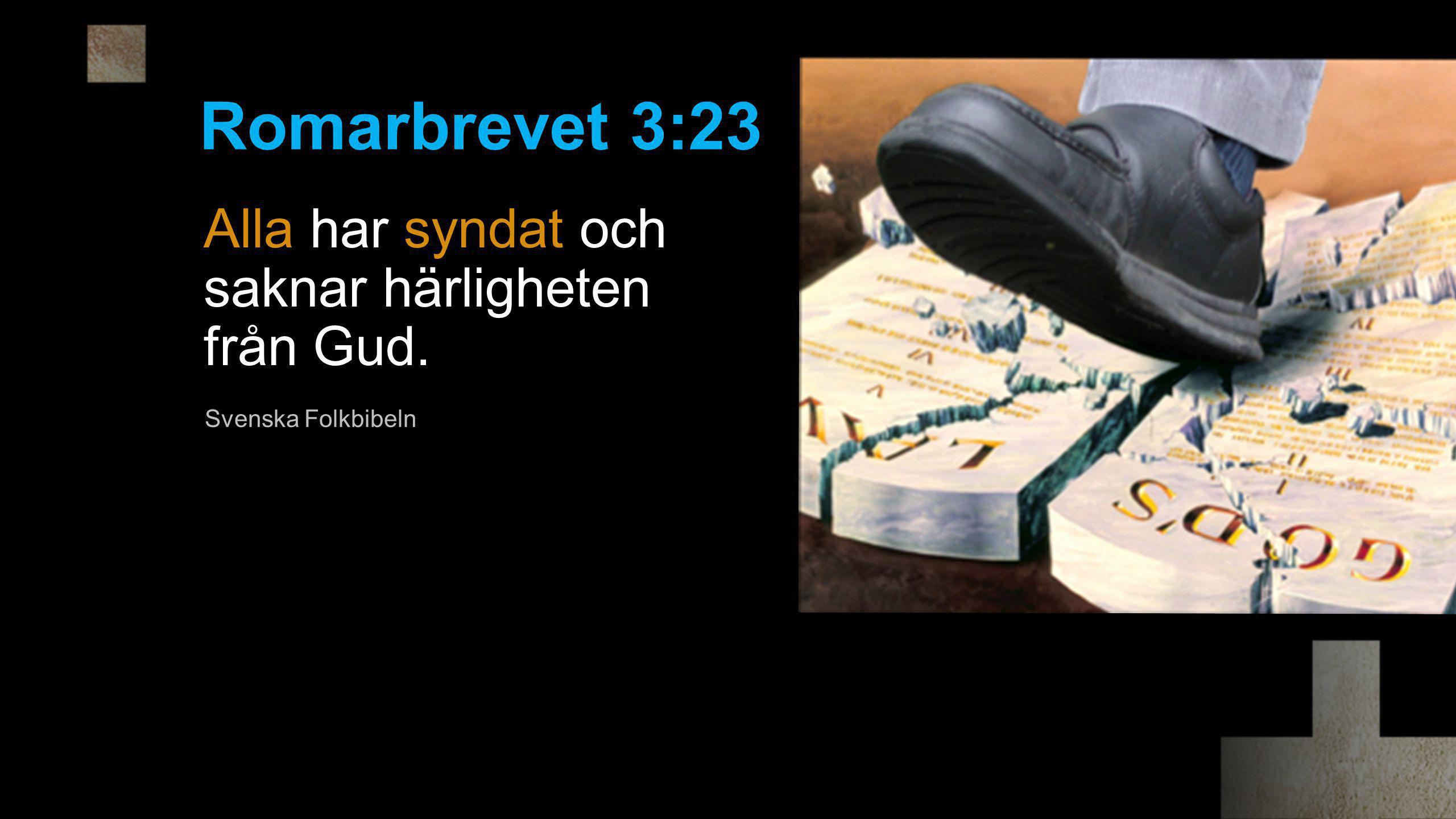 Alla har syndat och saknar härligheten från Gud. Romarbrevet 3:23 Svenska Folkbibeln