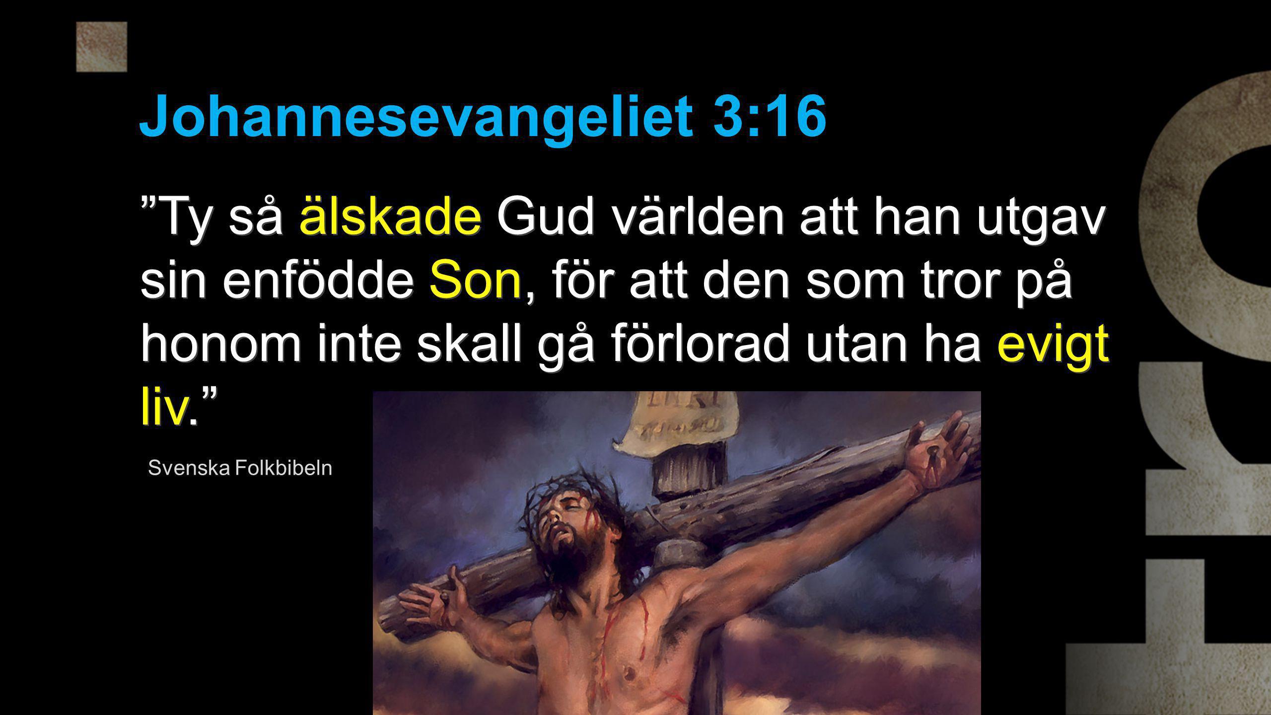Johannesevangeliet 3:16 Ty så älskade Gud världen att han utgav sin enfödde Son, för att den som tror på honom inte skall gå förlorad utan ha evigt liv. Svenska Folkbibeln