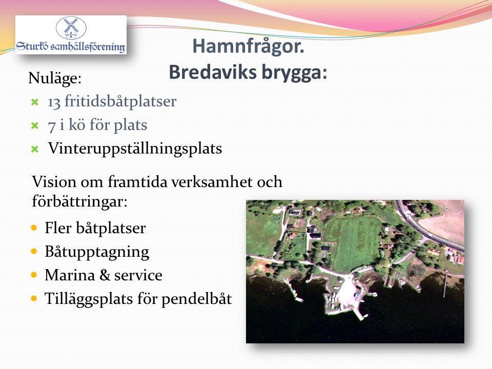 Hamnfrågor. Bredaviks brygga:  Fler båtplatser  Båtupptagning  Marina & service  Tilläggsplats för pendelbåt Vision om framtida verksamhet och för