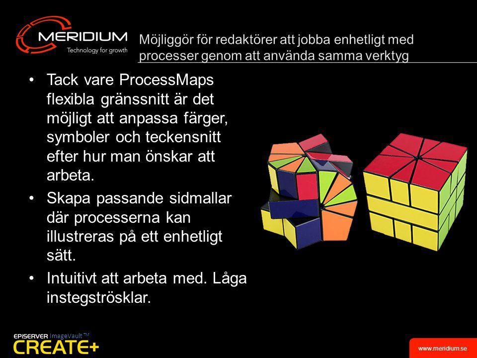 www.meridium.se •Tack vare ProcessMaps flexibla gränssnitt är det möjligt att anpassa färger, symboler och teckensnitt efter hur man önskar att arbeta.