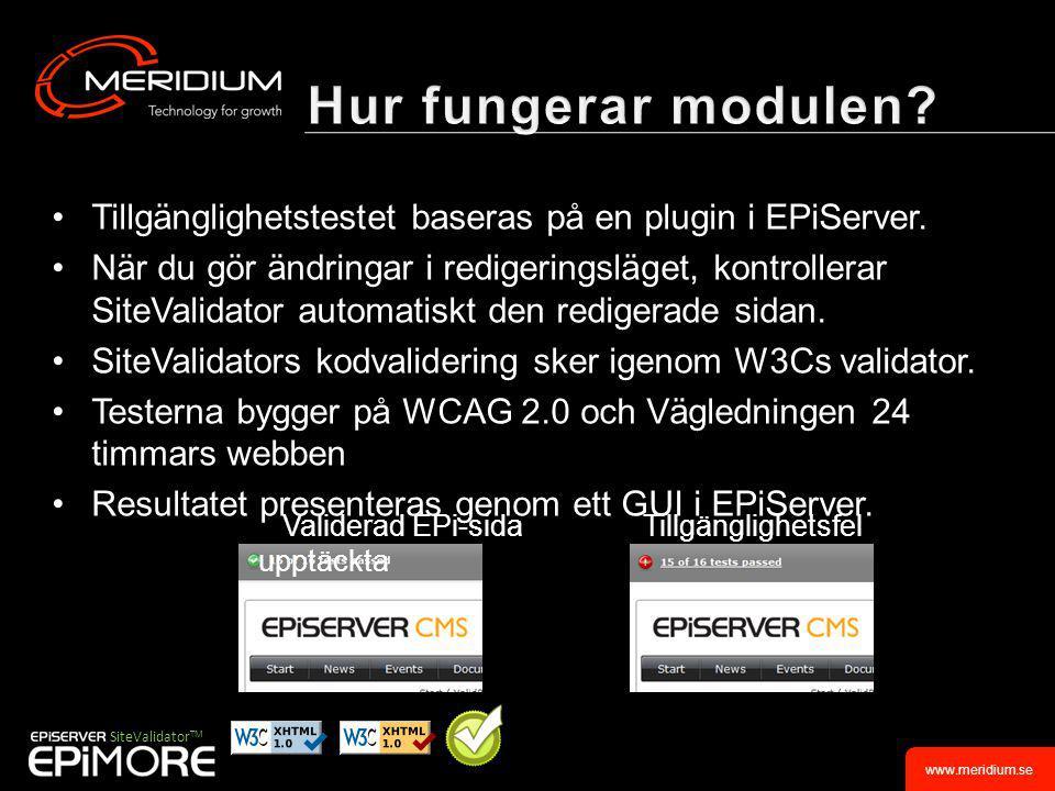 www.meridium.se •Tillgänglighetstestet baseras på en plugin i EPiServer.